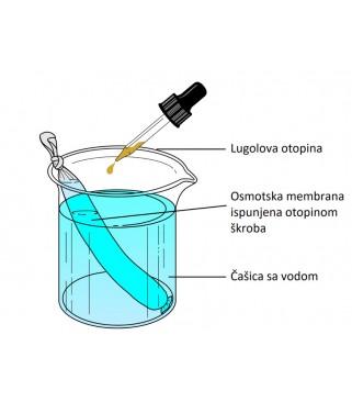Komplet za demonstraciju pokusa osmoze