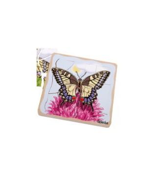 Slojevita slagalica razvoj leptira