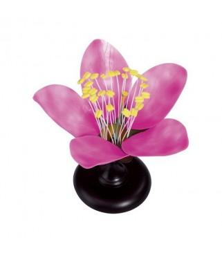 Edukativni model cvijeta
