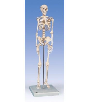 Mini kostur na bazi