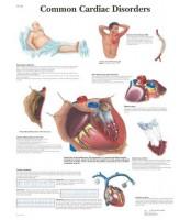 Kardiološki poremećaji (1343)