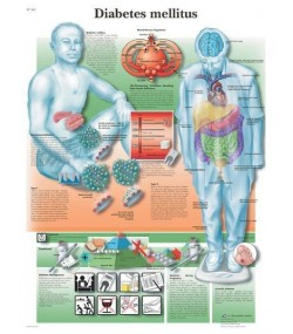 Anorgansko/organski set (učenički) (009)